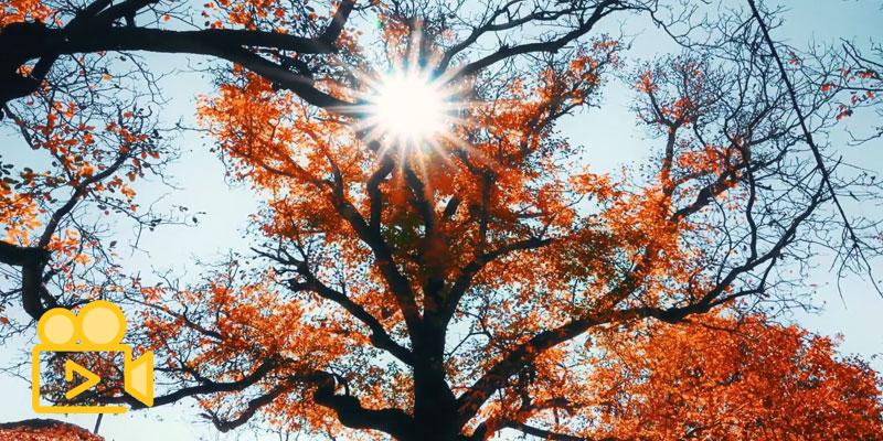 پاییز روستای شاه رستم